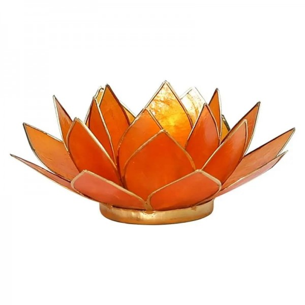 Capiz Lotus Licht orange Chakra 2 Goldrand -- 13.5 cm